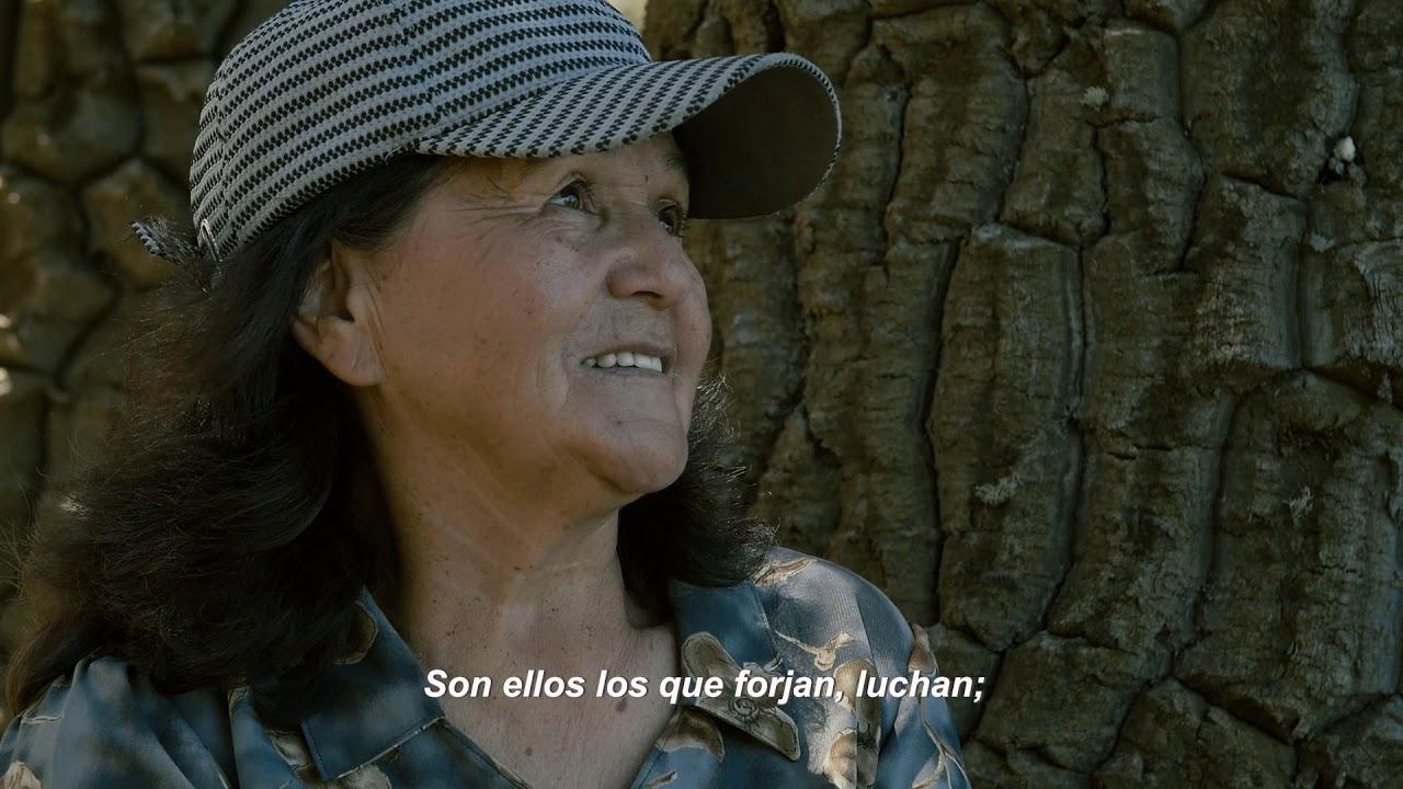 Voces del Territorio: Dagoberto Uribe (Lonquimay)